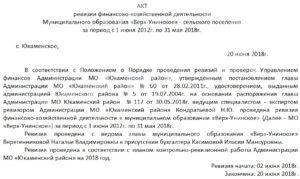 Акт ревизии финансово-хозяйственной деятельности