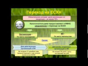 Переход на ЕСХН: кто и как может воспользоваться аграрным спецрежимом