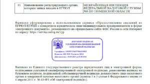 Электронные выписки из ЕГРЮЛ и ЕГРИП абсолютно аналогичны бумажным