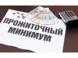 Прожиточный минимум в Республике Мордовия
