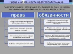 Основные права и обязанности налогоплательщиков