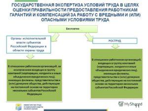Как осуществляется государственная экспертиза условий труда