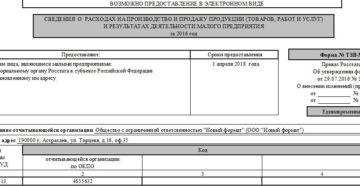 Сведения о расходах и деятельности малого предприятия по форме ТЗВ-МП