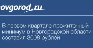 Прожиточный минимум в Новгородской области
