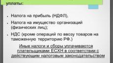 Налог на имущество на ЕСХН
