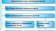 ФНС разъяснила, какую информацию нужно предоставить для вычета на обучение